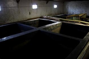 ②麹に食塩水を加え、深さ約3mにもなるもろみタンクで、発酵熟成させます。