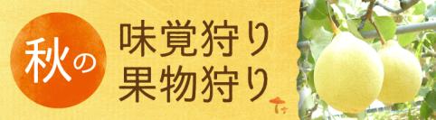 岡山の秋の味覚狩り&果物狩り特集2017