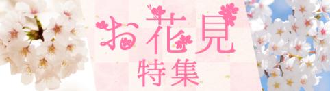 岡山の桜・お花見スポット2019