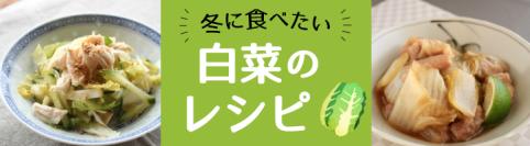 冬の万能野菜!白菜のレシピ12選